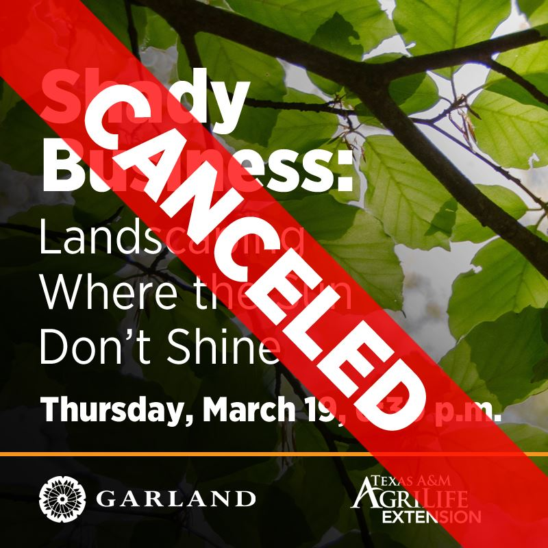 CANCELED: Shady Business: Landscaping Where the Sun Don't Shine | Thursday, March 18, 6:30 p.m.